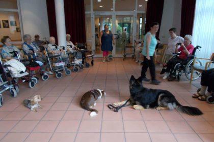 Tierischer Besuch in unserer Einrichtung