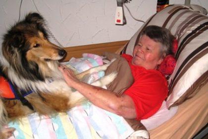 Besuch auf vier Pfoten: Therapiehund Chelsea kommt vorbei…