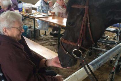 Katharinenstift-Senioren besuchen Reitstall