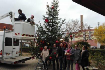 Adventsstimmung macht sich breit – der Lichterbaum wird aufgestellt