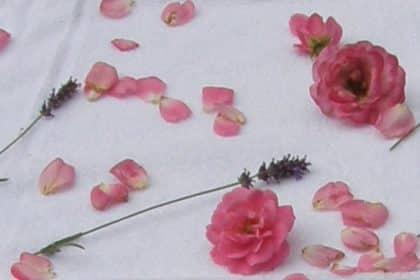 103 Jährige feiert im Angelikastift Geburtstag