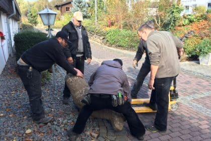 Umzug unserer Robbe in den Vorgarten