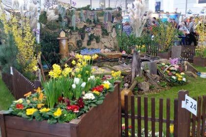 Haus-Garten-Freizeit … unser Messebesuch