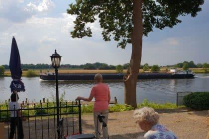 Freund Schwan und die Romantik am Fluss
