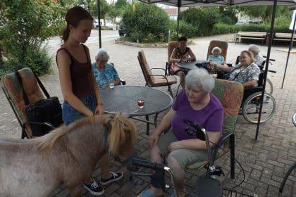 Ponys wecken schöne Erinnerungen