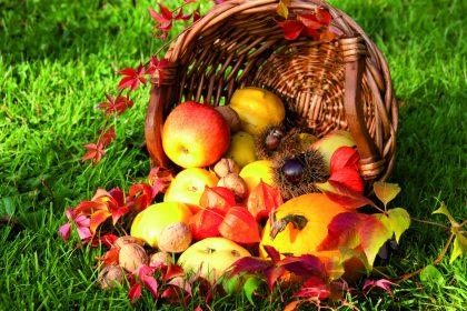 Den goldenen Herbst begrüßen!