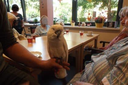 Tierischer Besuch im CURA Seniorenzentrum HH-Bergedorf