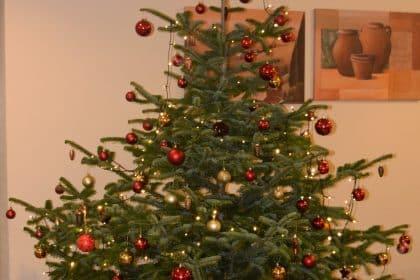 """Die Seniorenresidenz """"Unter der Homburg"""" in Stadtoldendorf wünscht Ihnen ein gesegnetes Weihnachtsfest und einen guten Rutsch ins neue Jahr"""