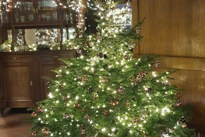 """""""Am Weihnachtsbaum die Lichter brennen"""""""