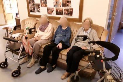 Die drei Damen vom Sofa…