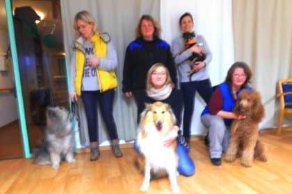 Praktische Prüfung zum Therapiehund