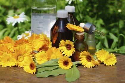 Heilkräuter zur Sommersonnenwende und ihre Wirkung