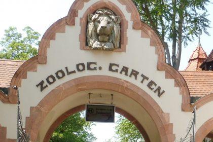 Immer Neues zu entdecken im Zoo Leipzig