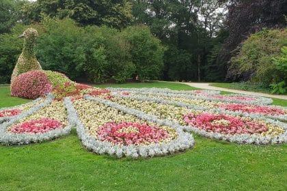 Unsere Seniorenreise in die Blumenpracht der Schlossgärten von Arcen