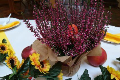 Zum Herbst kommt das Erntefest…