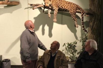 Besuch im Zoologischen Museum zu Hamburg