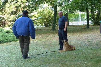 Die Hundestaffel bei uns zu Gast