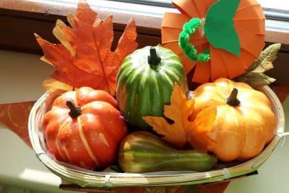 Rückblick auf den Herbst in Schönheide