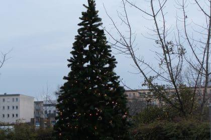 Weihnachtsmarkt im Cura Seniorenzentrum Halle Lutherbogen
