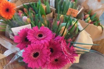 Frühlingsblumen für unsere Bewohner