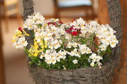 """Monatlicher Mottotag """"Blumenfest in Madeira"""""""
