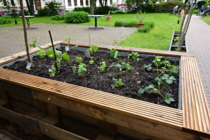 Das Gärtnerjahr 2021 ist eröffnet