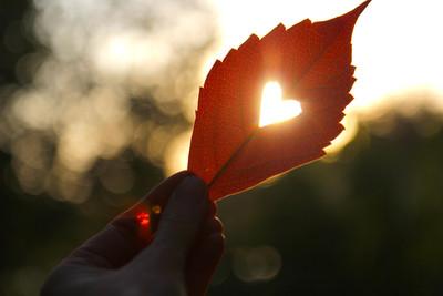 Herbstliche Gefühle